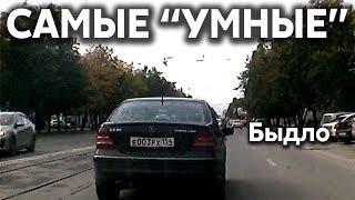 Подборка САМЫХ УМНЫХ водителей #300