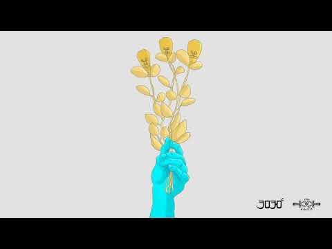 3030 - A Verdade Tem Que Ser Dita (part. MV Bill)