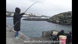 Fishing video, Fishing White seabream, Pesca ao sargo , Karagöz Balıkçılık