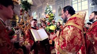 Чтение Евангелия на Арабском языке(Читает епископ Сафитский Димитрий (Антиохийская Православная Церковь), 2014-07-29T11:05:46.000Z)