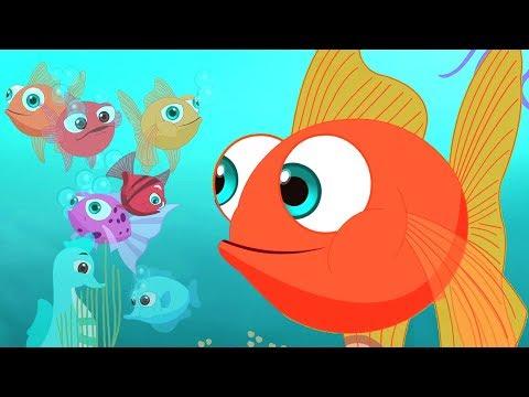 Machli Jal Ki Rani Hai | Hindi Rhymes | मछली जल की रानी है | Kids Tv India | Baal Geet In Hindi