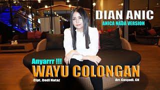 Download WAYU COLONGAN - DIAN ANIC NEW....!!! ANICA NADA VERSION SAIR