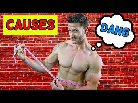 Top 5 Causes of Belly Fat for MEN [2019] (Fat Loss 101)