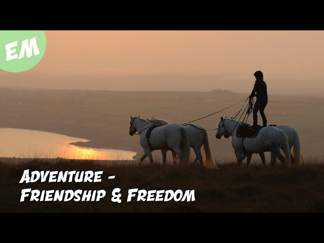 Adventure - Friendship & Freedom