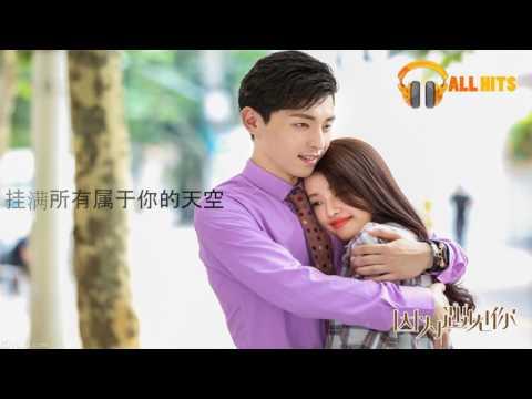 「 动态歌词版MV - Because of you Theme Song」 朱元冰、阿悄《因为遇见你》~ 电视剧《因为遇见你》片尾曲