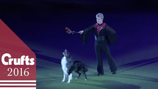 Mary Ray's Heelwork to Music Performance at Crufts 2016