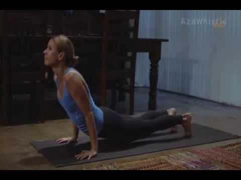 surya namaskara beginner yoga  youtube