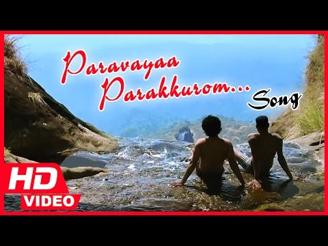 Kayal Tamil Movie - Paravayaa Parakkurom Song Video | Chandran | Anandhi | D.Imman