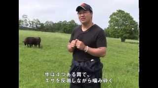 パルシステムの日本型畜産「牛」編