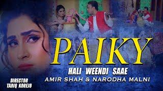 PAIKY HALI WEENDI SAE Full Song   AMIR SHAH   KTN NEW SONG 2018   Post Zeeshan Ali Jokhio Direct