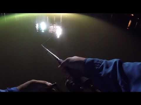 Redfish fishing on the lights (galveston bay texas)