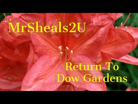 Return To Dow Gardens