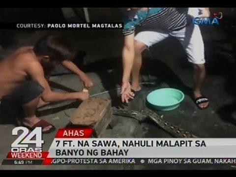 24 Oras: 7 ft. na sawa, nahuli malapit sa banyo ng bahay