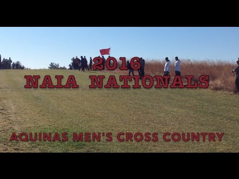 2016  NAIA  Cross Country