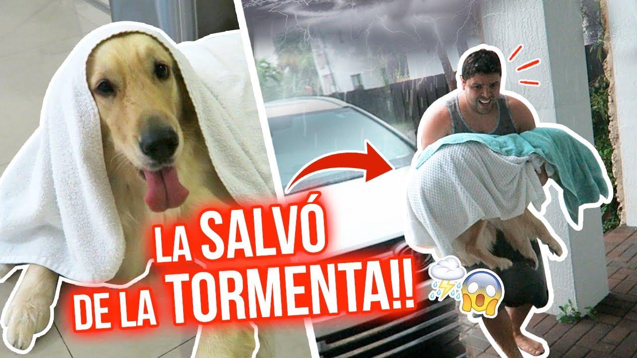 MI PERRITA QUEDÓ ATRAPADA EN LA TORMENTA!! 😱⛈⚡️  |15 Jun 2020