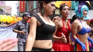 BDS Gaijatra 2015