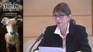 Astrid GUILLAUME | Définitions et traductions des mots-clés de la protection animale
