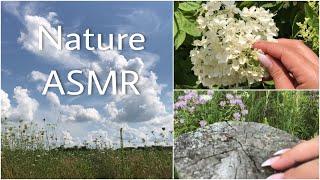Nature ASMR (no music, no talking)