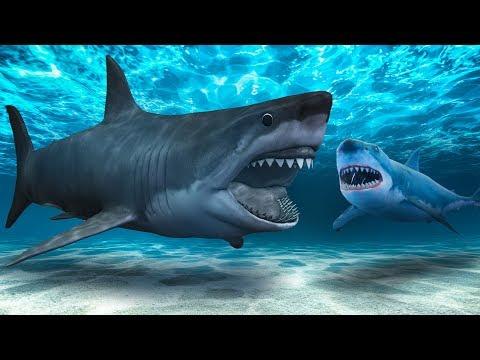 世界上可能存在著比史前巨齒鯊更可怕的鯊魚