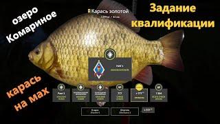 Русская рыбалка 4 - озеро Комариное - Карась трофейный на поплавок Задание квалификации мах 2-3