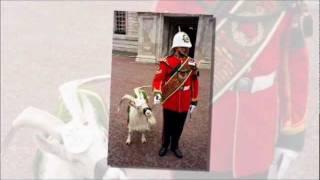 В джазе только козлики. - Goats & Sax(Sensuous Sax with Le Valedon (featuring: Kenny Geoffrey, Dan Pickering & Marion Meadows) Как часто приходится слышать по разному поводу: Ну и..., 2011-07-29T05:23:32.000Z)