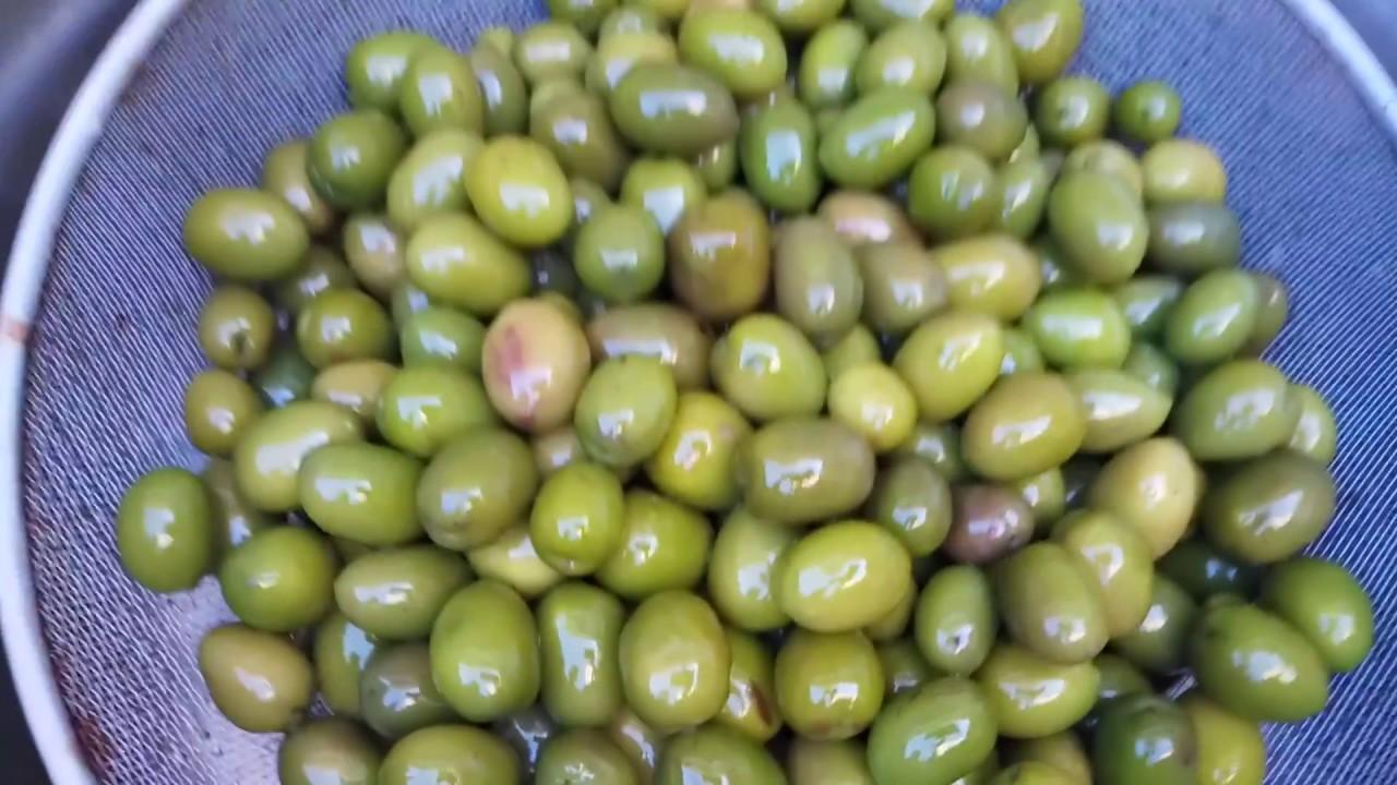 como preparar aceitunas con salmuera