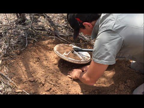 GOLD NUGGET Hunting - Australia -  METAL DETECTING GPZ 7000 Minelab