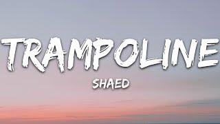 Download lagu SHAED - Trampoline (Lyrics)