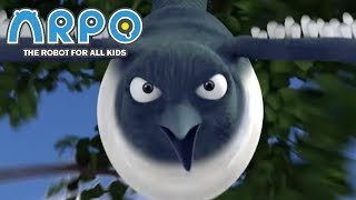 ARPO The Robot For All Kids - Angry Bird | Compilation | Cartoon for Kids Video