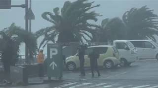 Typhoon Cimaron Crashes Into Japan
