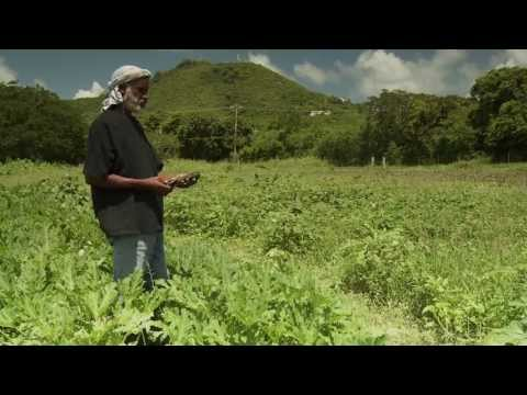 "NRCS Caribbean ""Helping the Land"" (Full Version)"