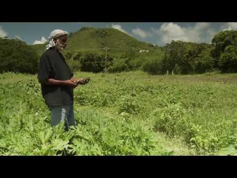 "NRCS Caribbean ""Helping the Land"" (Full Version)"