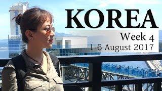 Video KOREA (week 4)   Arwina J download MP3, 3GP, MP4, WEBM, AVI, FLV November 2017