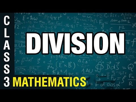 Division | 3rd Class Mathematics | Digital Teacher