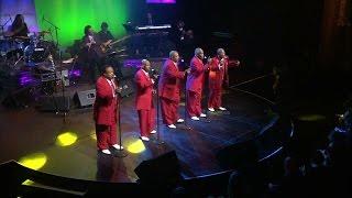the contours 2016 detroit performs live