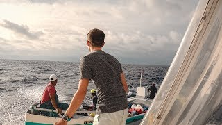 Approached at Sea 100 Miles from Land - Sailing to Ecuador