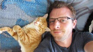猫がいればいいのだ。猫好きメンズたちの日々の暮らしを1本の動画にまとめた猫ラブメンズ大集合