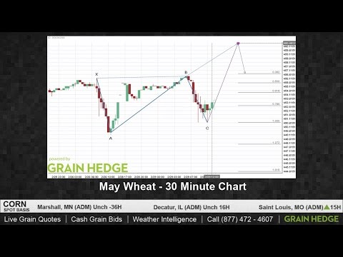 Wheat's Potential to Move Higher is Increasing