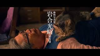 2019年2月22日に公開が予定されている、動物写真家・岩合光昭さんの映画...