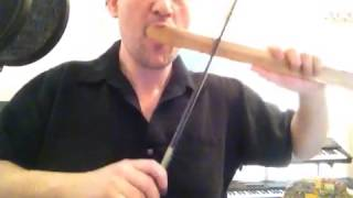 Bow Harp Playing with a Violin Bow!