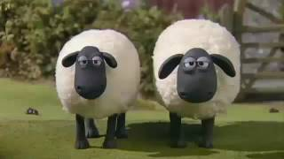NEW Shaun The Sheep Full Episodes About 11 Hour Collection 2017 HD
