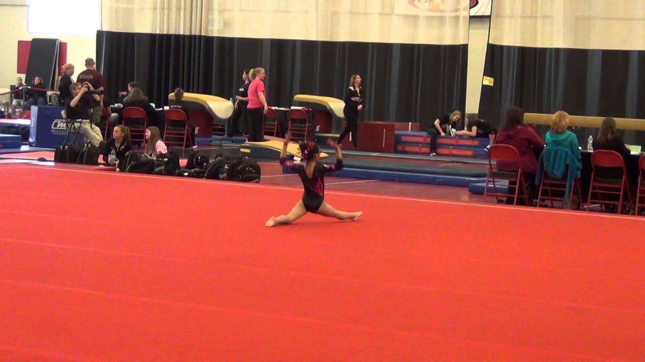 level 4 state meet 2014