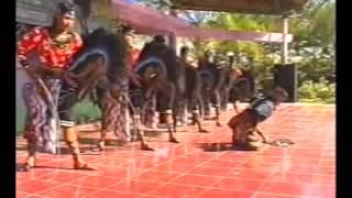 Turonggo safitri putro