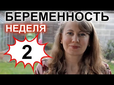 БЕРЕМЕННОСТЬ - НЕДЕЛЯ 02