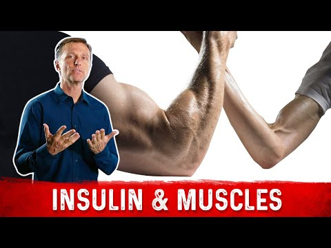 Does Low Carb and Low Insulin Cause Low Muscle Mass?