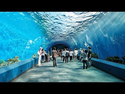 Underwater Park Pattaya Bangkok
