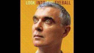 David Byrne - The Great Intoxication