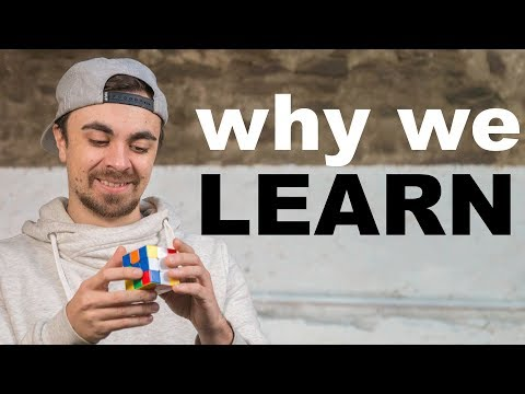 Why We Love to Learn