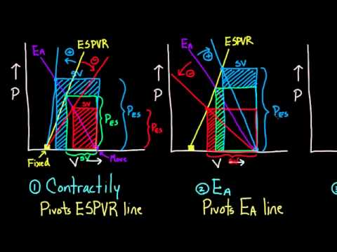 01 Changing the PV loop 10 Contractility, Ea, and preload effects on