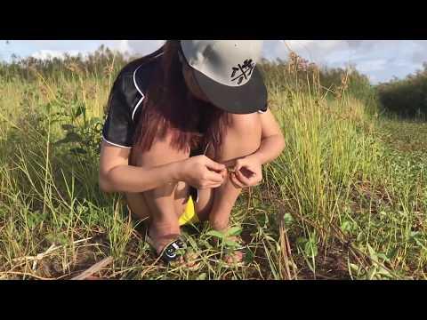 Видео в попку на рыбалке